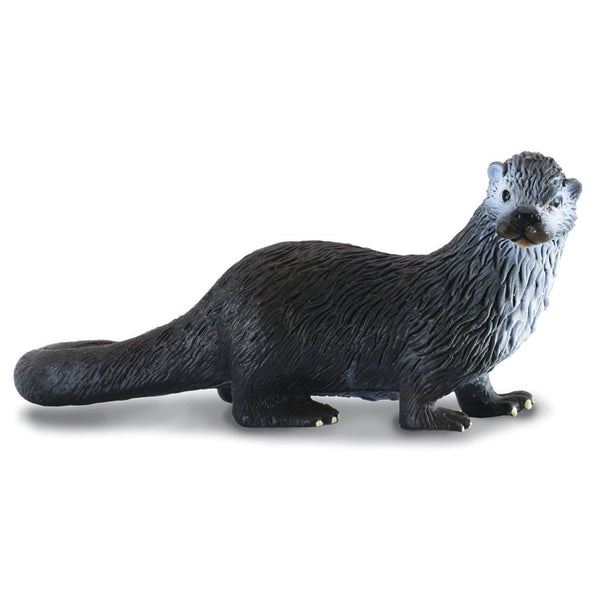 CollectA Common Otter-88053-Animal Kingdoms Toy Store
