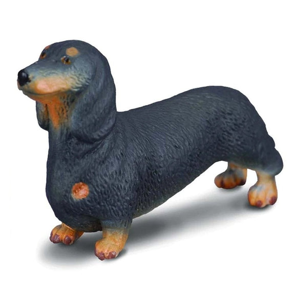 CollectA Dachshund-88185-Animal Kingdoms Toy Store
