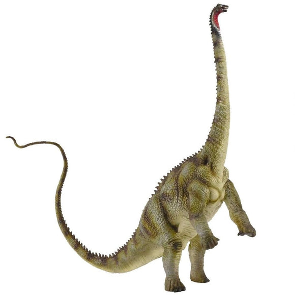 CollectA Diplodocus - Prehistoric - AnimalKingdoms.co.nz