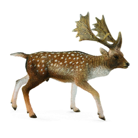 CollectA Fallow Deer Male - Wild Life - AnimalKingdoms.co.nz