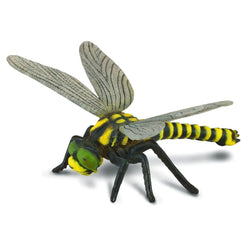 CollectA Golden Ringed Dragonfly - Insect - AnimalKingdoms.co.nz