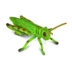 CollectA Grasshopper - Insect - AnimalKingdoms.co.nz