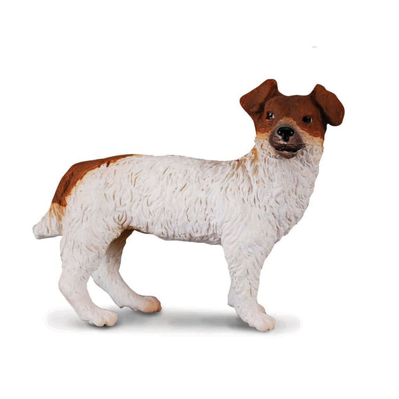 CollectA Jack Russell Terrier-88080-Animal Kingdoms Toy Store