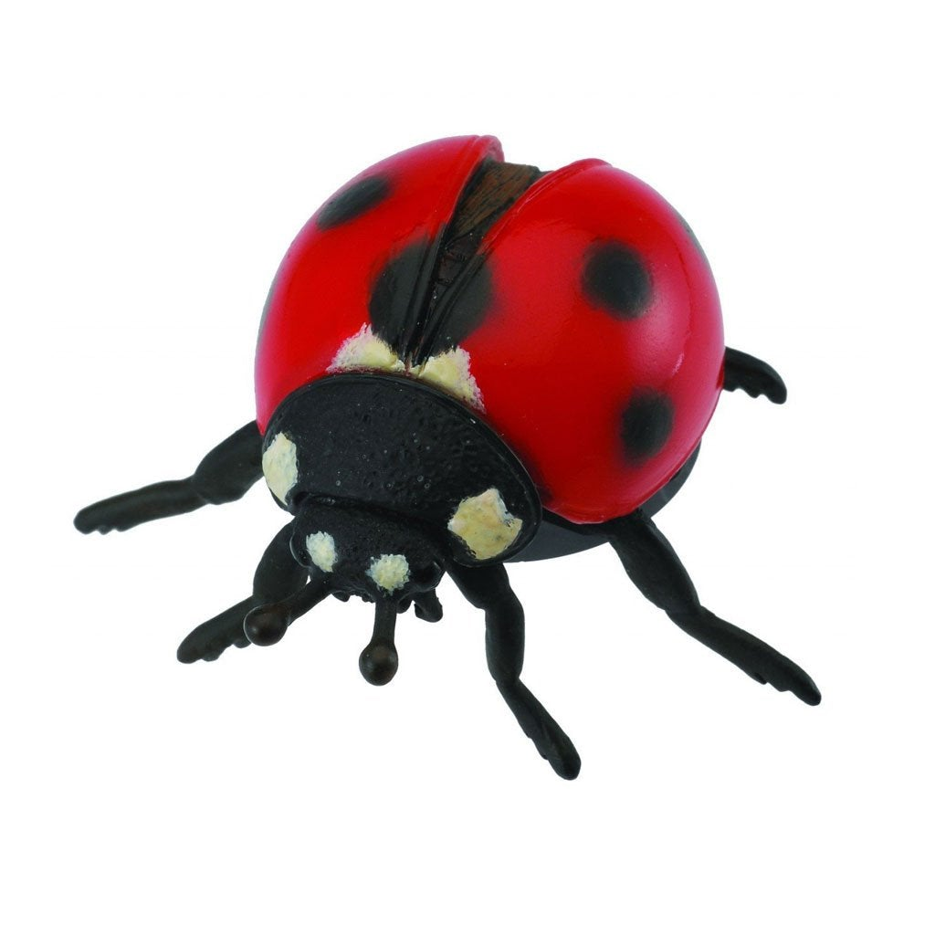 CollectA Ladybird - Insect - AnimalKingdoms.co.nz