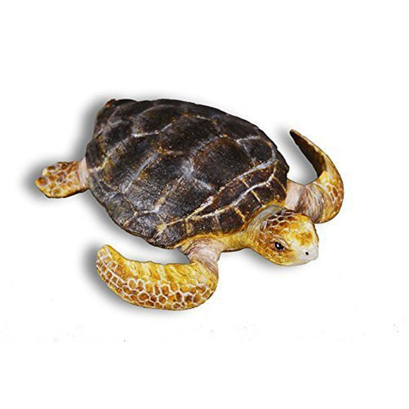 CollectA Loggerhead Turtle - Sealife - AnimalKingdoms.co.nz