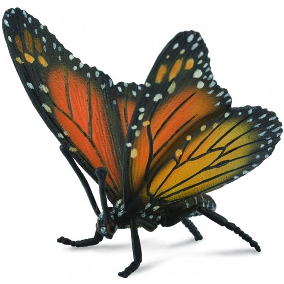 CollectA Monarch Butterfly - Insect - AnimalKingdoms.co.nz