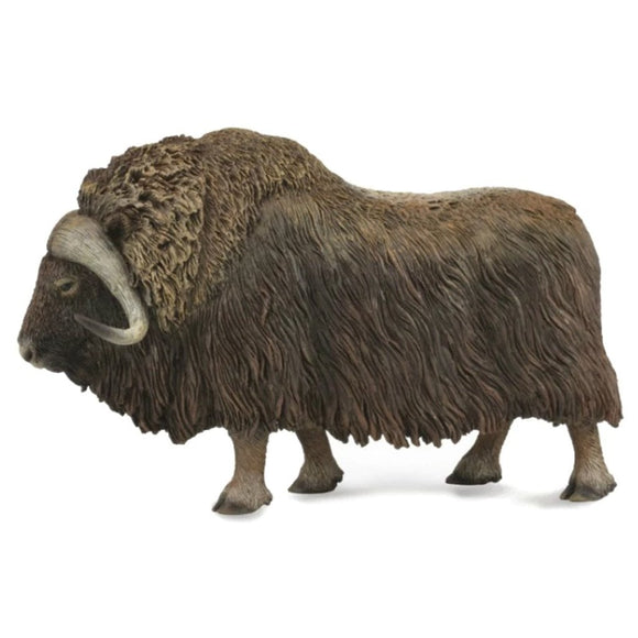 CollectA Musk Ox - Wild Life - AnimalKingdoms.co.nz