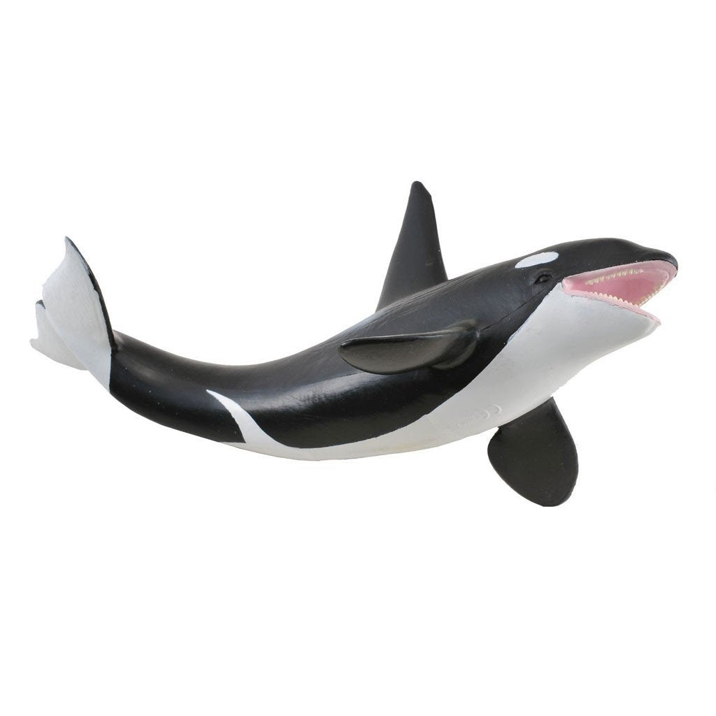 CollectA Orca Killer Whale - Sealife - AnimalKingdoms.co.nz