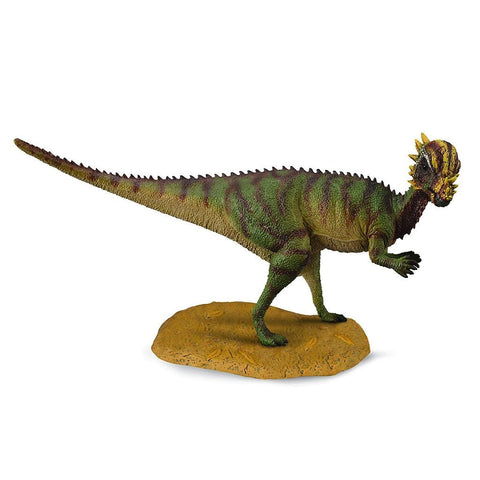 CollectA Pachycephalosaurus - Prehistoric - AnimalKingdoms.co.nz