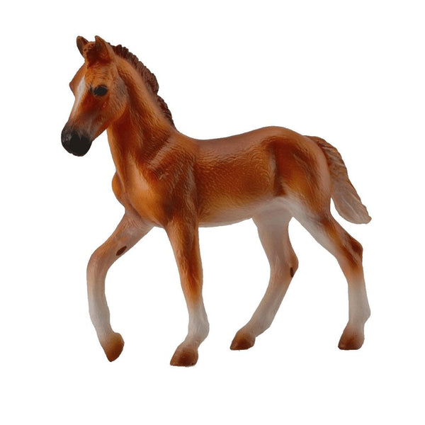 CollectA Peruvian Paso Foal Chestnut-88751-Animal Kingdoms Toy Store