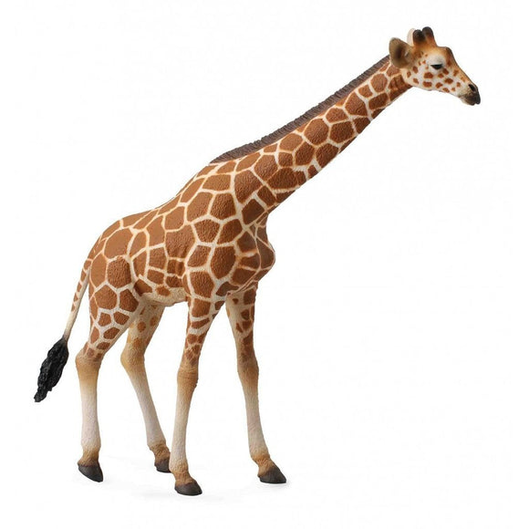 CollectA Reticulated Giraffe - Wild Life - AnimalKingdoms.co.nz
