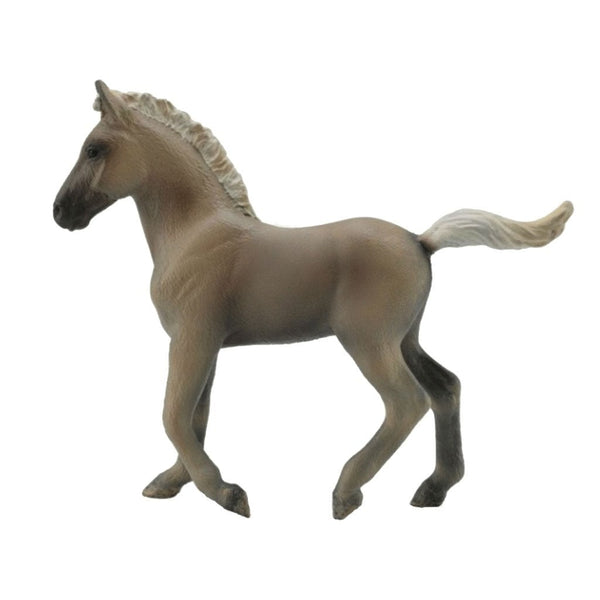 CollectA Rocky Mountain Foal Chocolate-88799-Animal Kingdoms Toy Store