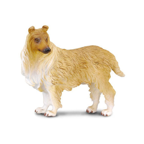 CollectA Rough Haired Collie - Cats and Dogs - AnimalKingdoms.co.nz