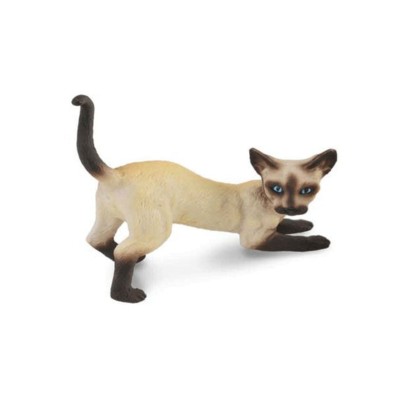 CollectA Siamese Cat Stretching-88332-Animal Kingdoms Toy Store