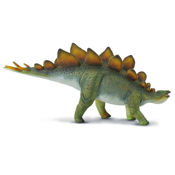 CollectA Stegosaurus Deluxe Scale 1:40 - AnimalKingdoms.co.nz