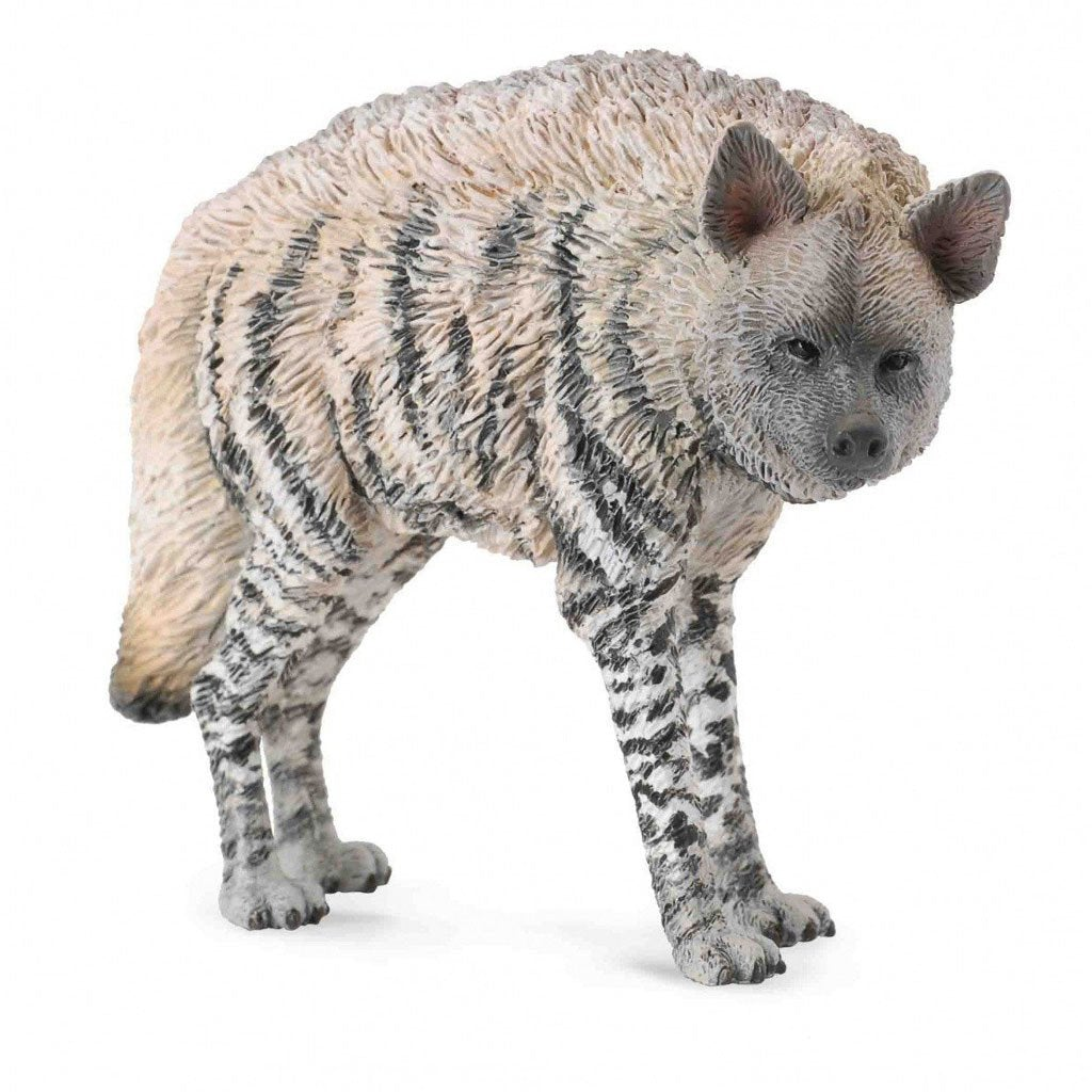 CollectA Striped Hyena - Wild Life - AnimalKingdoms.co.nz