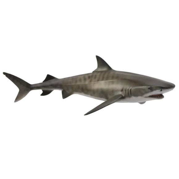 CollectA Tiger Shark-88661-Animal Kingdoms Toy Store