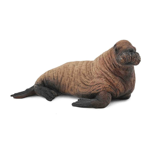 CollectA Walrus Calf-88570-Animal Kingdoms Toy Store