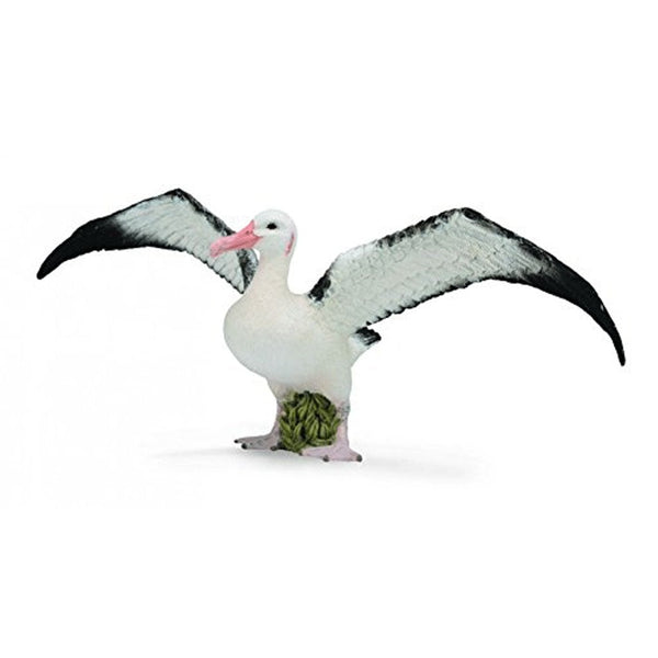 CollectA Wandering Albatross-88765-Animal Kingdoms Toy Store