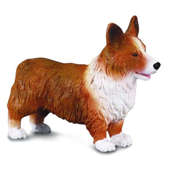 CollectA Welsh Corgi-88082-Animal Kingdoms Toy Store
