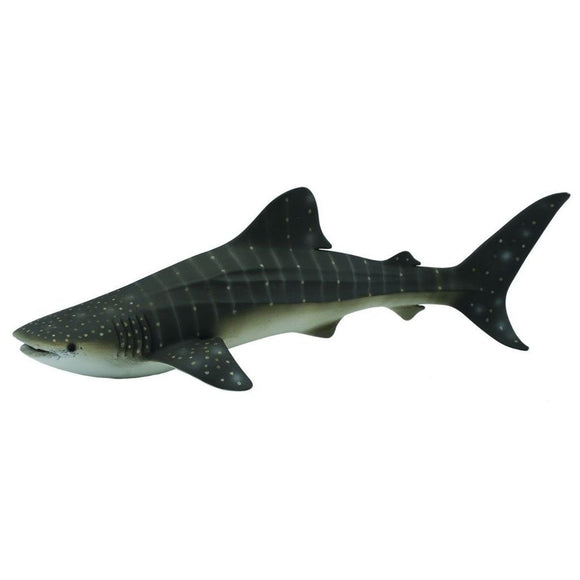 CollectA Whale Shark - AnimalKingdoms.co.nz