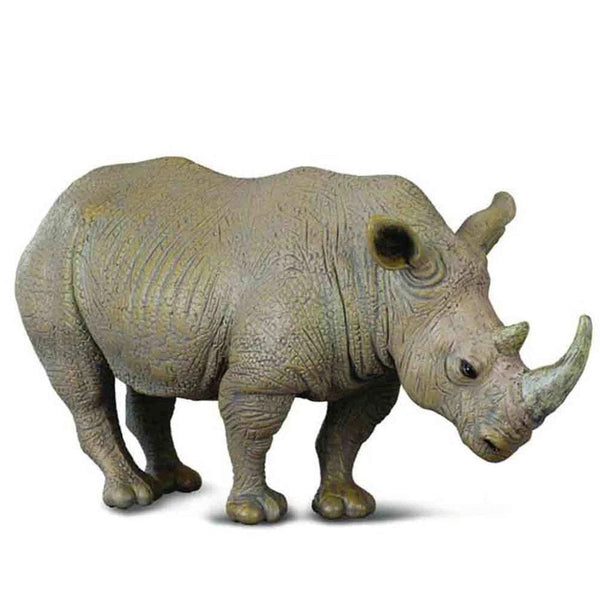 CollectA White Rhinoceros-88031-Animal Kingdoms Toy Store