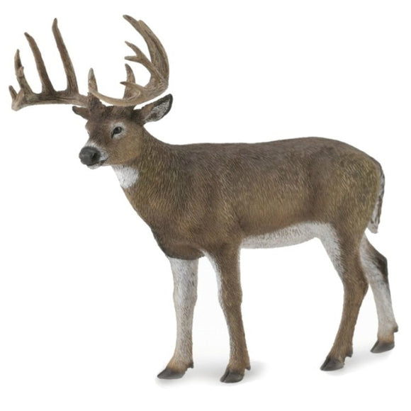 CollectA White-Tailed Deer-88832-Animal Kingdoms Toy Store