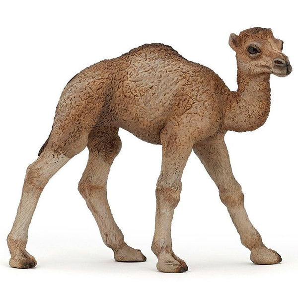 Papo Dromedary Camel Calf - AnimalKingdoms.co.nz