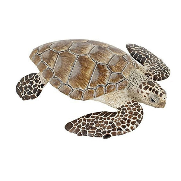 Papo Loggerhead Sea Turtle-56005-Animal Kingdoms Toy Store