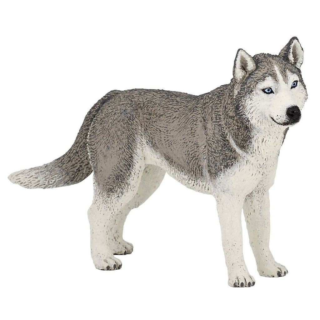 Papo Siberian Husky Dog - Cats and Dogs - AnimalKingdoms.co.nz