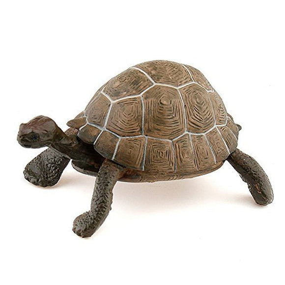 Papo Tortoise-50013-Animal Kingdoms Toy Store