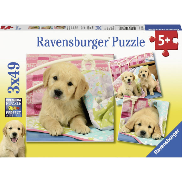 Ravensburger Cute Puppy Dogs Puzzle 3x49pc-RB08065-6-Animal Kingdoms Toy Store
