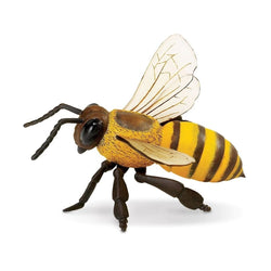 Safari Ltd Honey Bee - Insect - AnimalKingdoms.co.nz