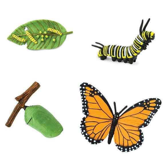 Safari Ltd Life Cycle of a Monarch Butterfly-SAF622616-Animal Kingdoms Toy Store