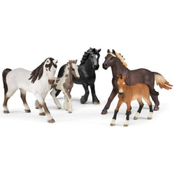 Schleich 5 Horses Collectors Pack Exclusive - Horses - AnimalKingdoms.co.nz