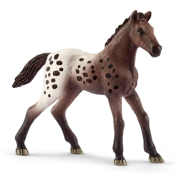 Schleich Appaloosa Foal-13862-Animal Kingdoms Toy Store