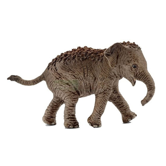 Schleich Asian Elephant Calf-14755-Animal Kingdoms Toy Store