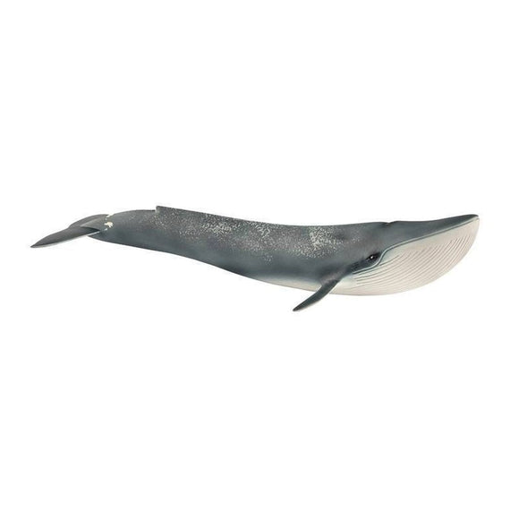 Schleich Blue Whale-14806-Animal Kingdoms Toy Store
