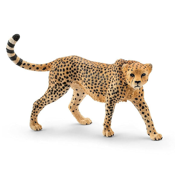 Schleich Cheetah Female - Wild Life - AnimalKingdoms.co.nz