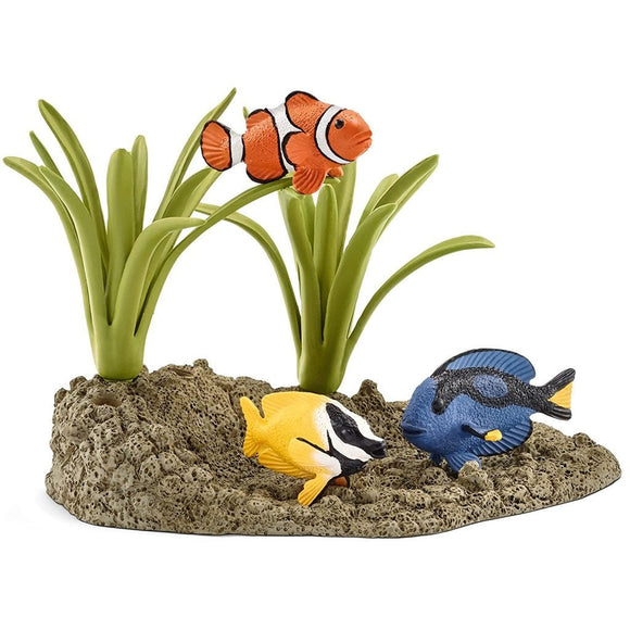 Schleich Coral Fish-42327-Animal Kingdoms Toy Store