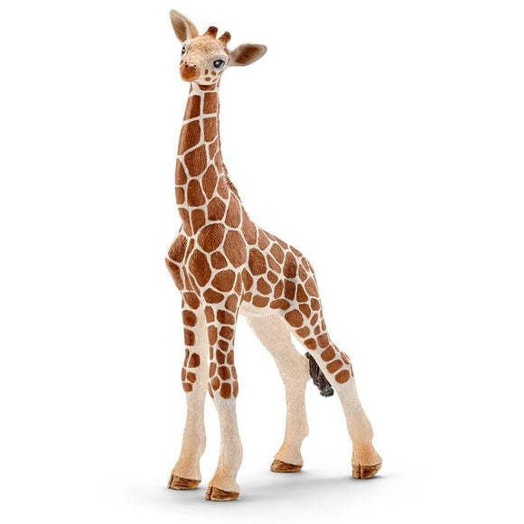 Schleich Giraffe Calf - Wild Life - AnimalKingdoms.co.nz