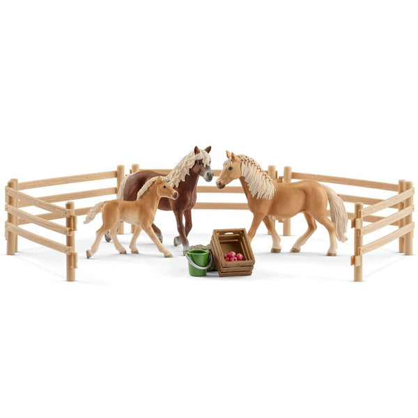Schleich Haflinger Family in the Meadow Exclusive - AnimalKingdoms.co.nz