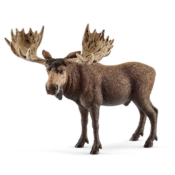 Schleich Moose Bull - Wild Life - AnimalKingdoms.co.nz
