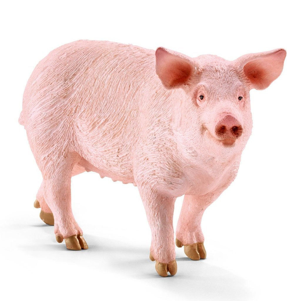 Schleich Pig - Farm Life - AnimalKingdoms.co.nz
