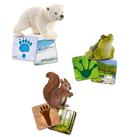 Schleich Wild Life Flash Cards - Wild Life - AnimalKingdoms.co.nz