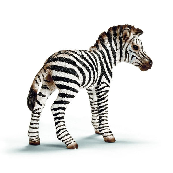 Schleich Zebra Foal - AnimalKingdoms.co.nz