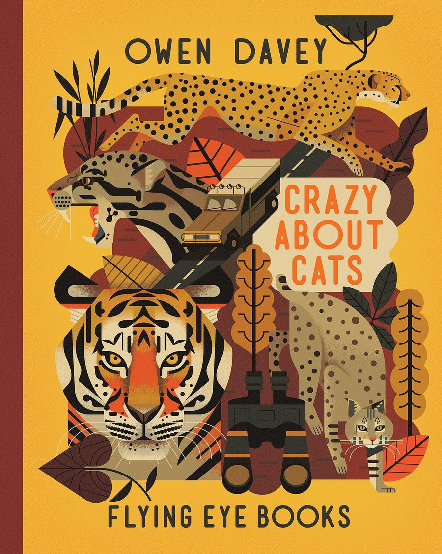 Crazy About Cats by Owen Davies