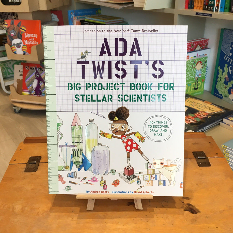 Ada Twist Activity Book by Andrea Beatty and David Roberts