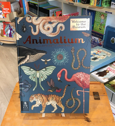 Animalium by Katie Scott and Jenny Broom