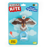 worlds smallest kite